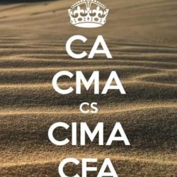 Professional certifications in Finance (CA, CFA etc) used in an article about top MBA programs for finance professionals